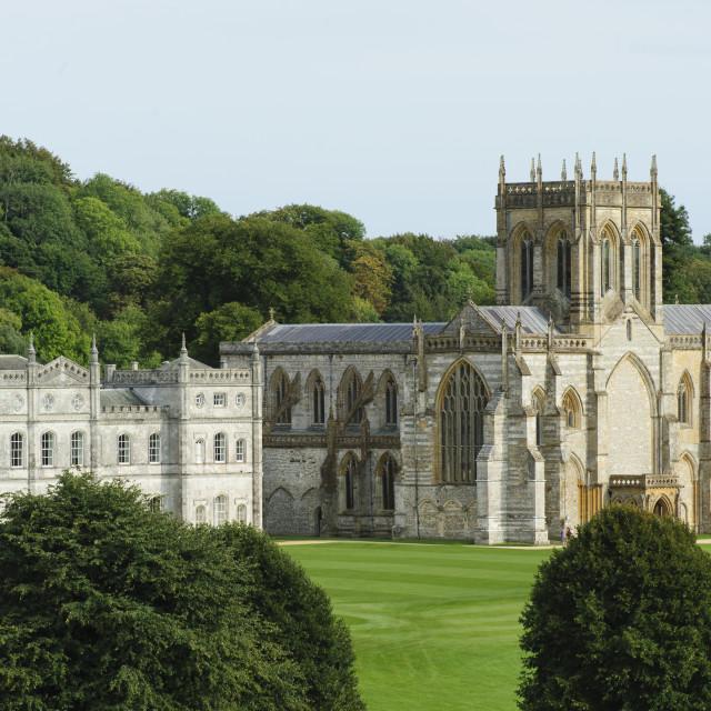 """Milton Abbey and MIlton School, Dorset"" stock image"