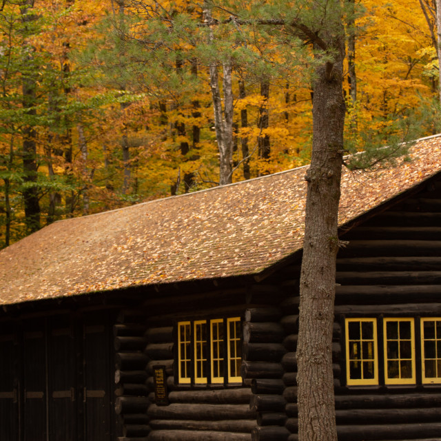 """Logging Cabin"" stock image"