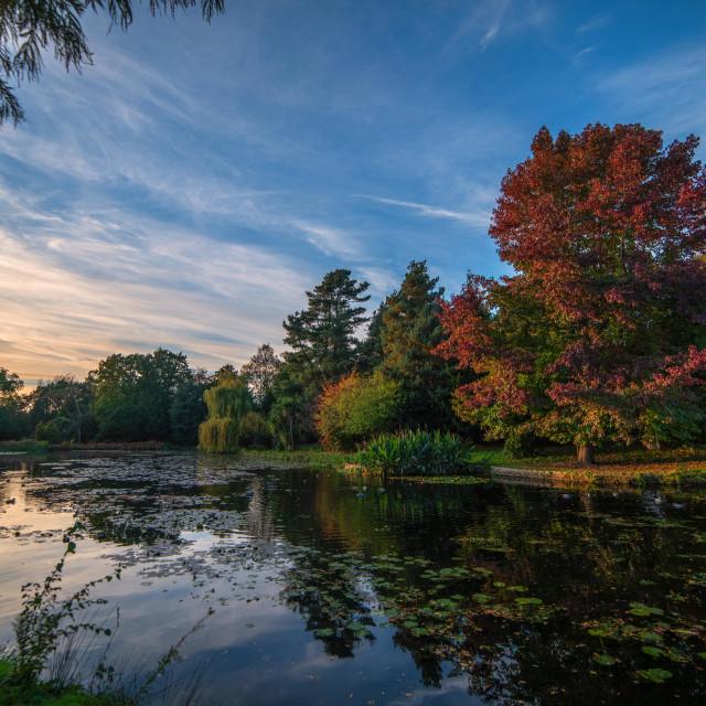 """Last Light Over An Autumn Lake"" stock image"