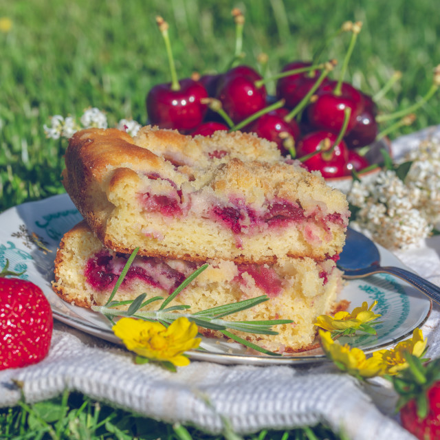 """""""Few portions of cherry cake on white plate placed on lawn"""" stock image"""