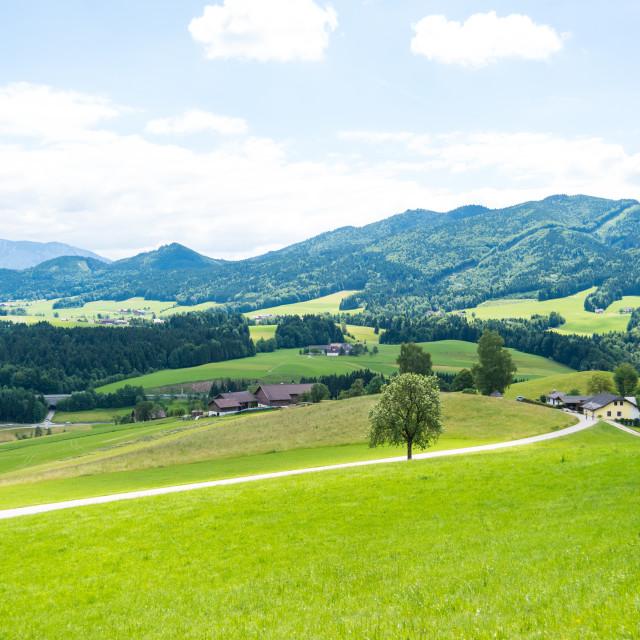 """Oberwang Landscape #397"" stock image"