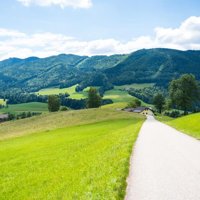 """Oberwang Landscape #511"" stock image"