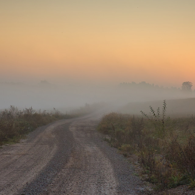 """A foggy road among meadows at dawn"" stock image"