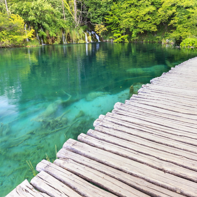 """""""Walking trail over blue water near waterfalls in a green forest. Plitvice..."""" stock image"""