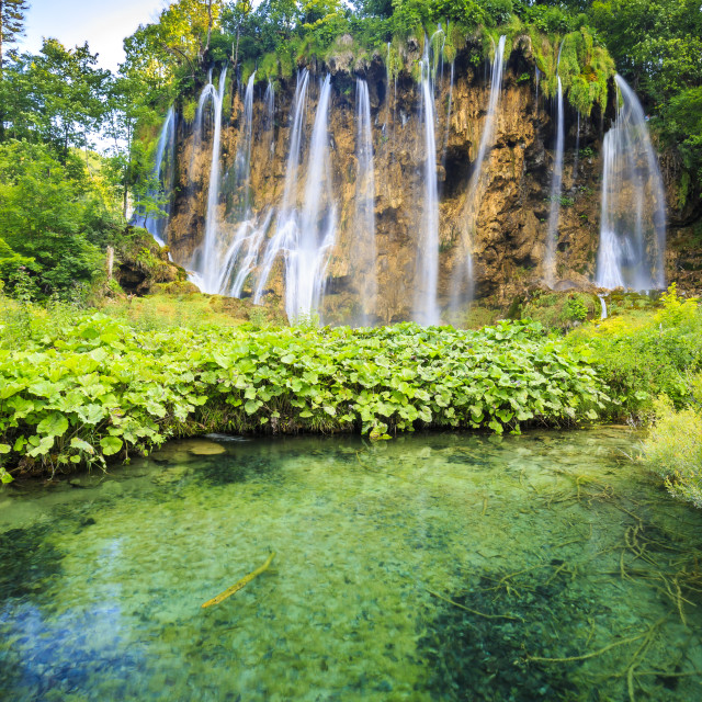 """""""Close up of blue waterfalls in a green forest during daytime in..."""" stock image"""