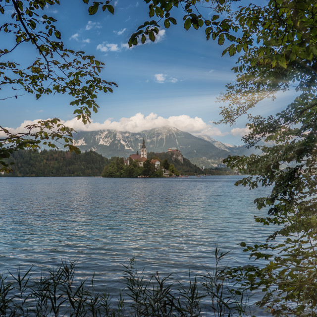"""""""Lake Bled with the island in Slovenia"""" stock image"""