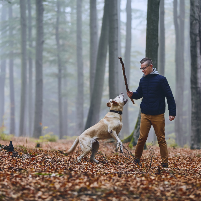 """""""Man with dog in autumn forest"""" stock image"""