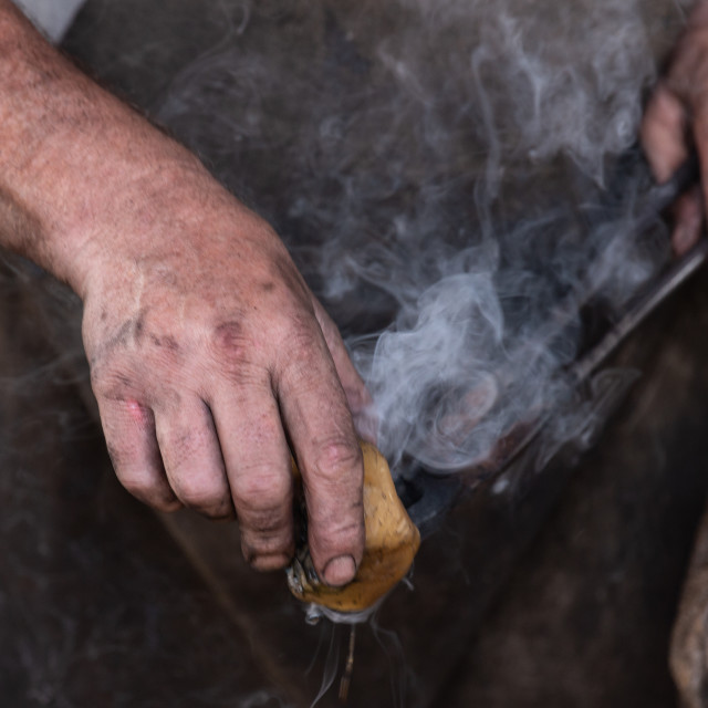 """A Blacksmith's Hands"" stock image"
