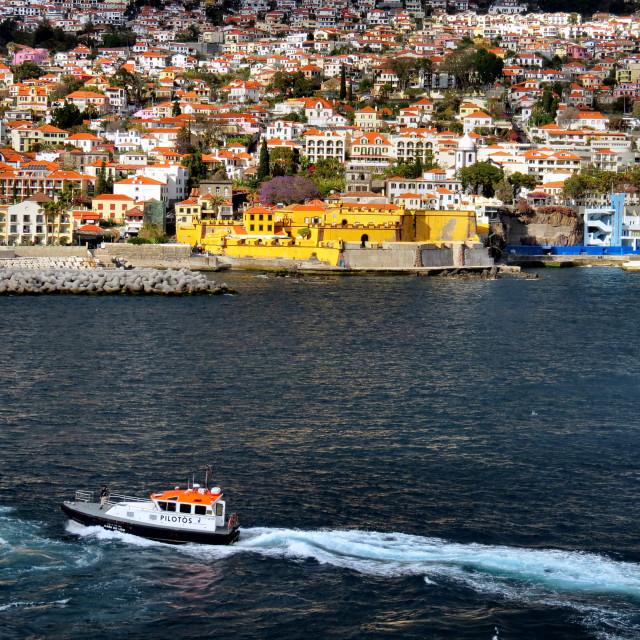 """""""Funchal, Madeira"""" stock image"""