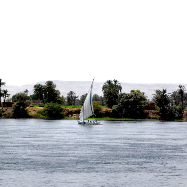 """""""Felucca on the Nile"""" stock image"""
