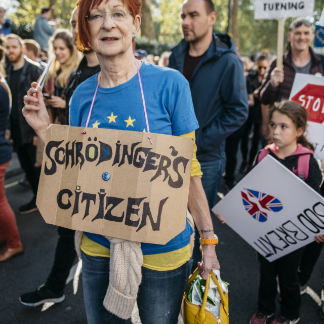 """""""Peoples' Vote March [8]"""" stock image"""