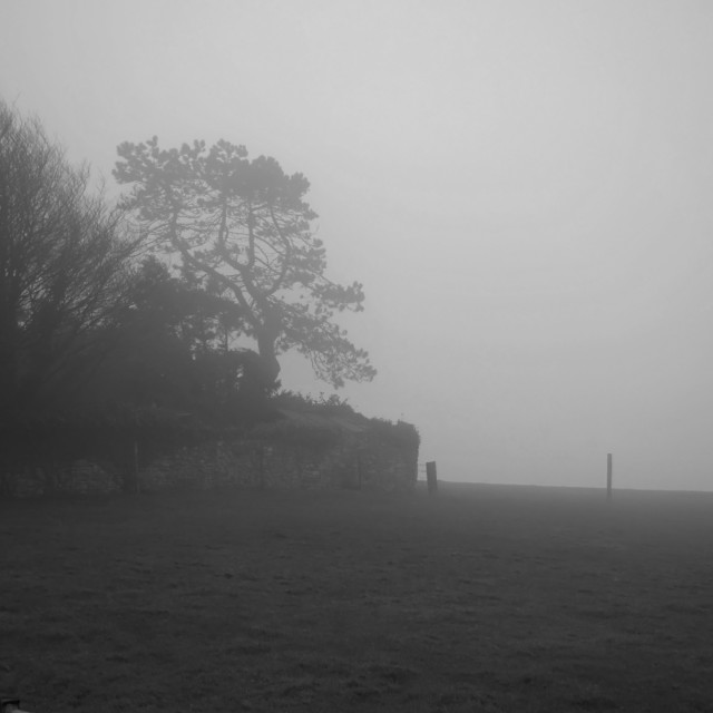 """A Misty day"" stock image"