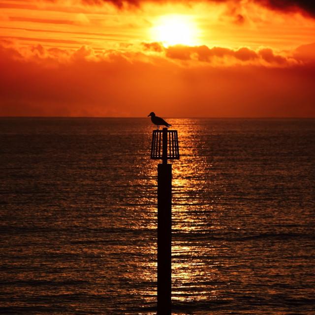"""Wat a sunrise"" stock image"