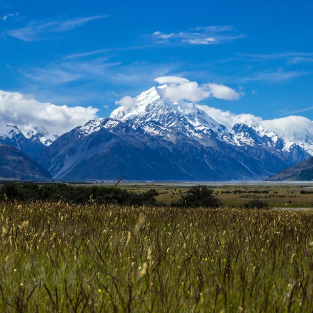 """Mt Cook ( Aoraki)"" stock image"
