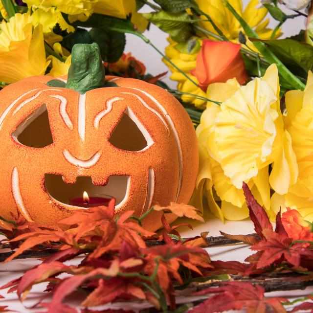 """Halloween pumpkin with flowers"" stock image"