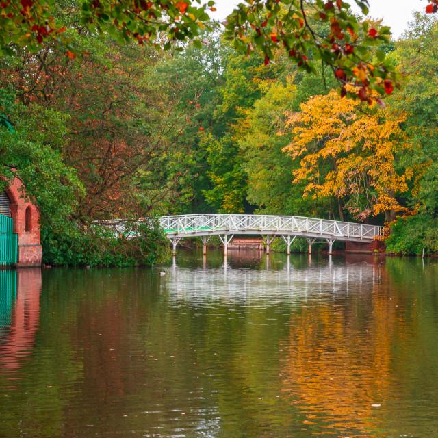 """Hartsholme - The White Bridge"" stock image"