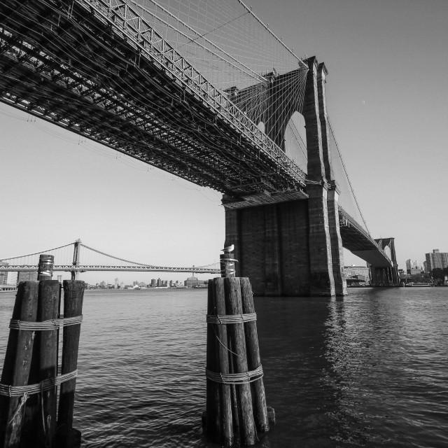 """Underneath Brooklyn Bridge"" stock image"