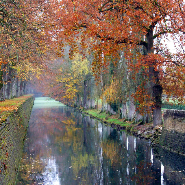 """""""Autumn Canal Reflections, Chenonceau, France"""" stock image"""