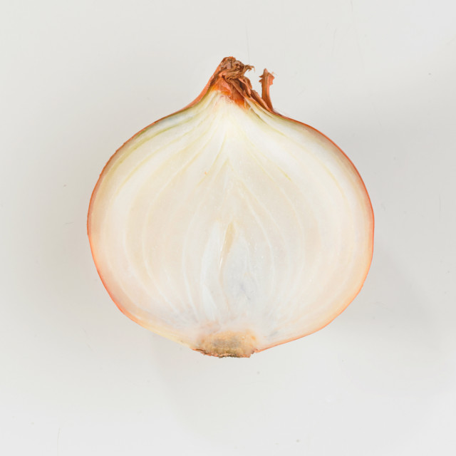 """a sliced onion"" stock image"
