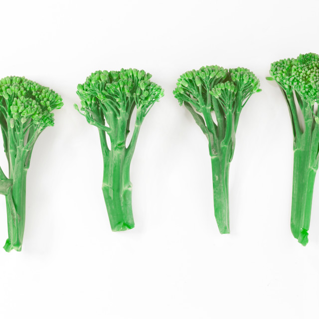 """sprouting broccoli"" stock image"