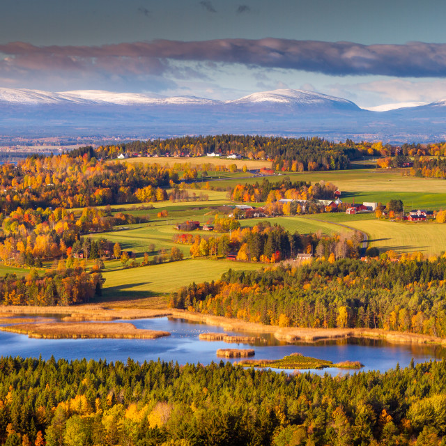 """Autumn in Sweden"" stock image"