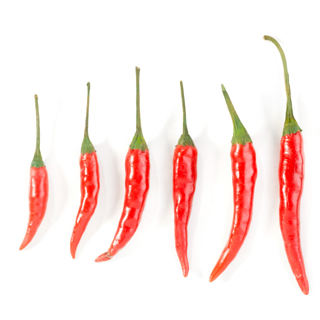 """red chillis"" stock image"