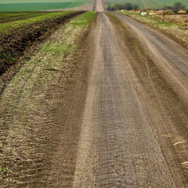 """""""Rural road"""" stock image"""