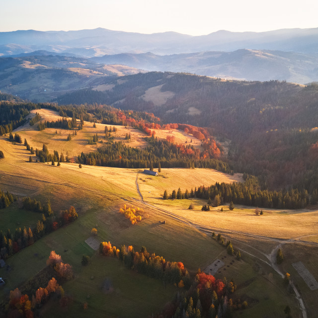 """""""Aerial panoramic view of autumn mountains. Colorful fall"""" stock image"""