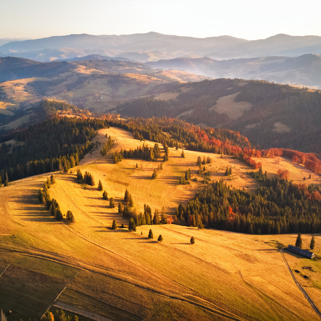 """""""Autumn sunset in mountains. Colorful fall woodland."""" stock image"""