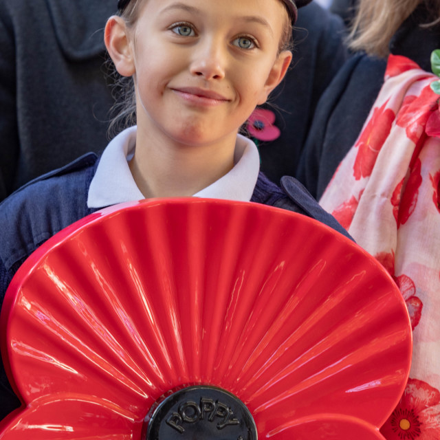 """""""Royal British Legion poppy appeal launch Brentwood Essex"""" stock image"""