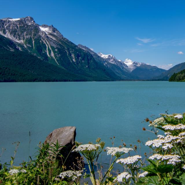 """Beautiful Chilkat Lake"" stock image"