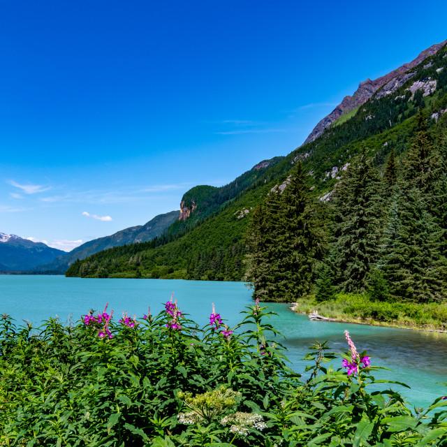 """Summer on Chilkat Lake"" stock image"