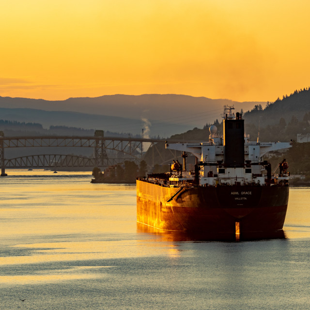 """""""Vancouver Harbour Morning"""" stock image"""