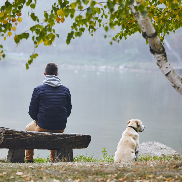 """""""Man with dog in autumn nature"""" stock image"""