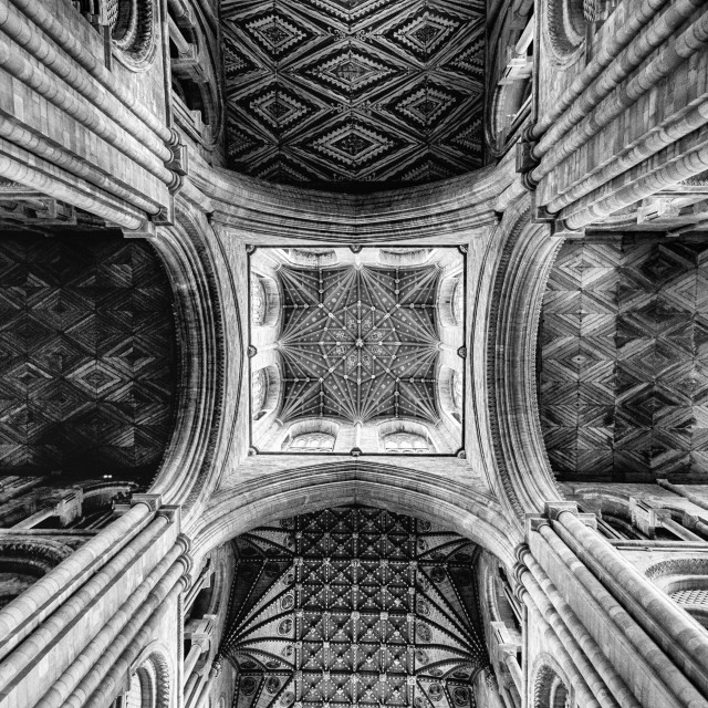 """""""Cathedral Ceiling"""" stock image"""