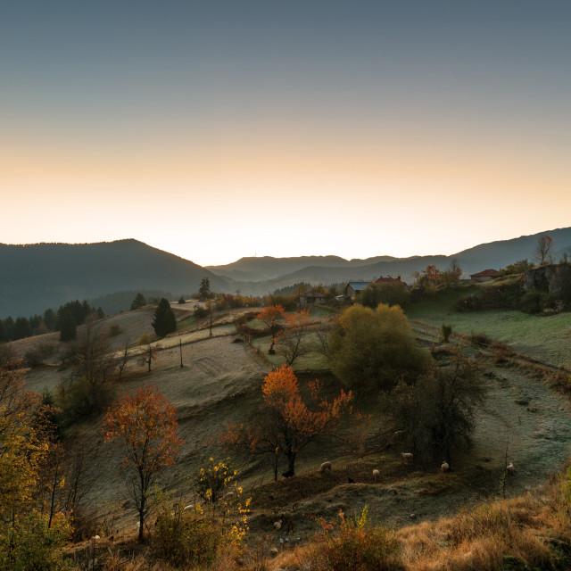 """Autumn landscape. Misty sunrise in Rodopi, Bulgaria."" stock image"