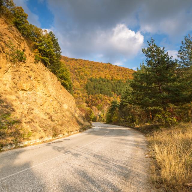 """Autumn road."" stock image"