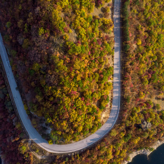 """""""Road in the autumn forest aerial view."""" stock image"""