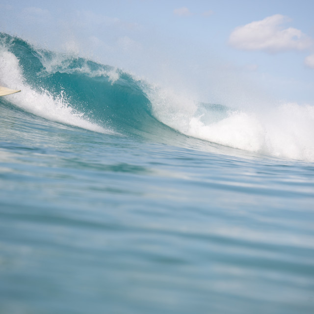 """""""surfer in action on the wave"""" stock image"""