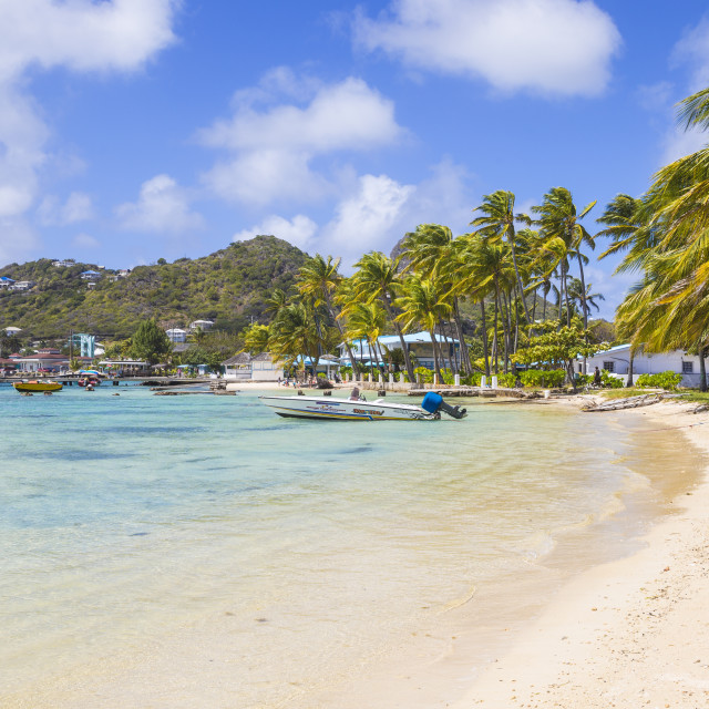 """""""St Vincent and The Grenadines, Union Island, Clifton harbour"""" stock image"""
