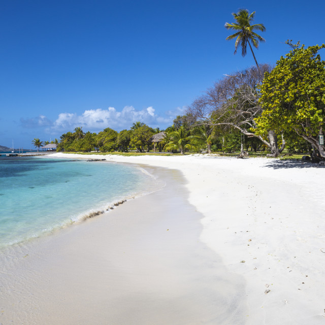 """""""St Vincent and The Grenadines, Petit St Vincent"""" stock image"""