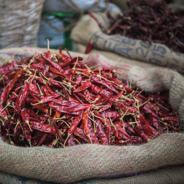 """""""Chillies for sale at a spice market in Fort Kochi (Cochin), Kerala, India"""" stock image"""