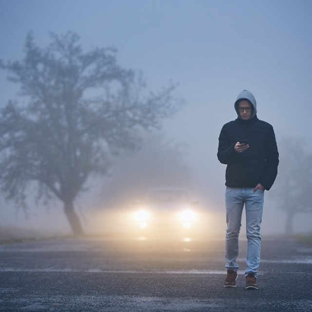 """Thick fog on roadside"" stock image"