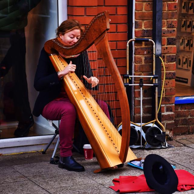 """Lady Harpist"" stock image"