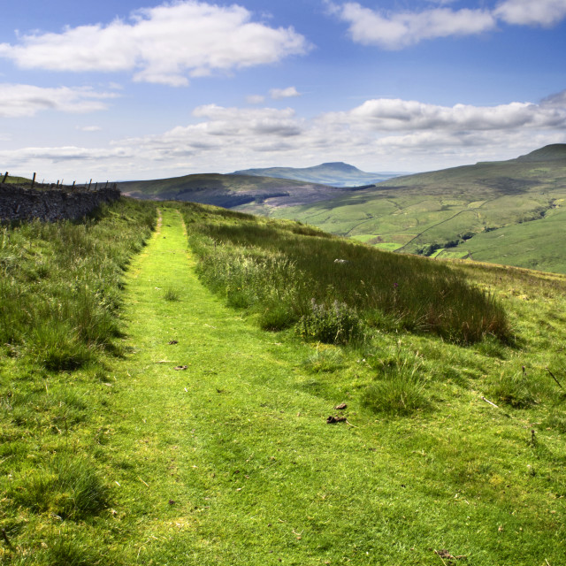 """""""The Penine Bridleway below Great Knoutberry Hill with Ingleborough in the..."""" stock image"""
