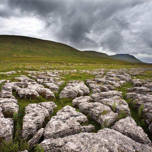 """Ingleborough from Fell Close Rocks near Ribblehead"" stock image"