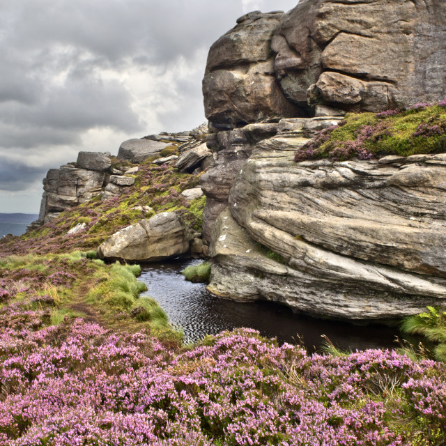 """Old Stell Crag in the Simonside Hills in Summer"" stock image"