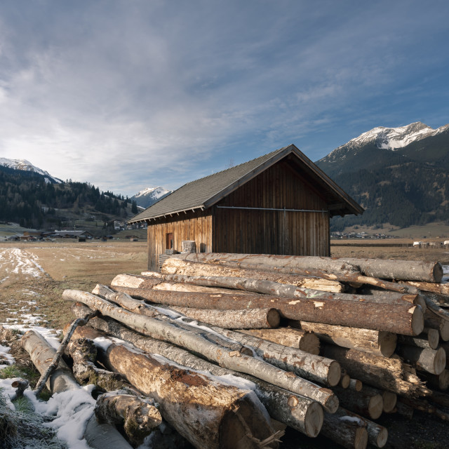 """Cottage and pile of cut tree trunks in the Alps"" stock image"