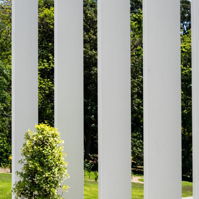 """""""White Stripes"""" stock image"""