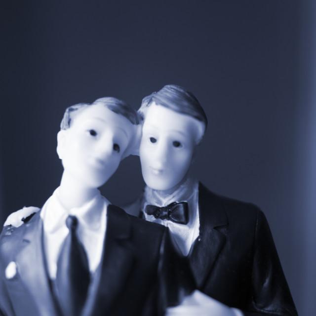"""Cake topper gay wedding couple"" stock image"
